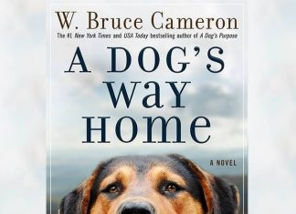 A Dog's Way Home movie from the writer and producer of A Dog's Purpose